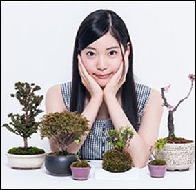 竹俣紅盆栽趣味