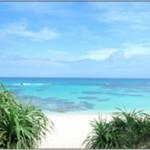 ナニコレ珍百景で奄美大島の赤く染まる集落の謎!子ガメ見れる海岸